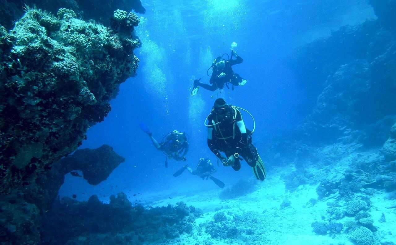 St Abbs Head diving