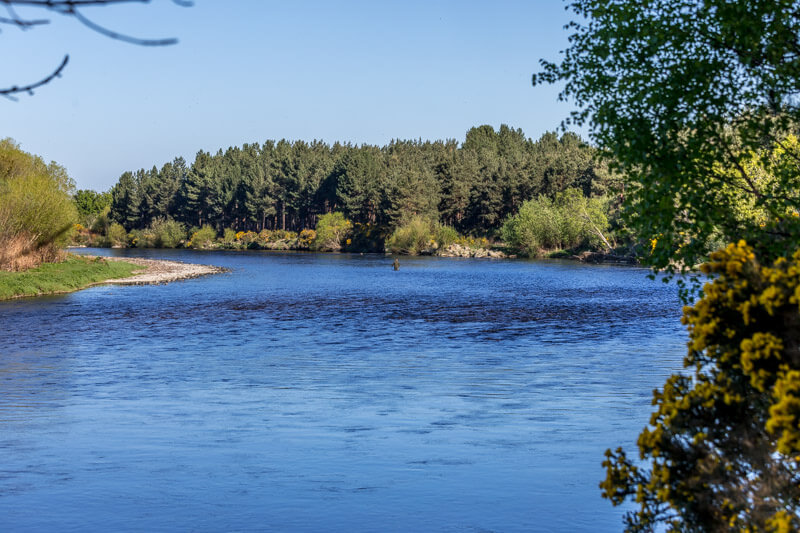 river spey summer